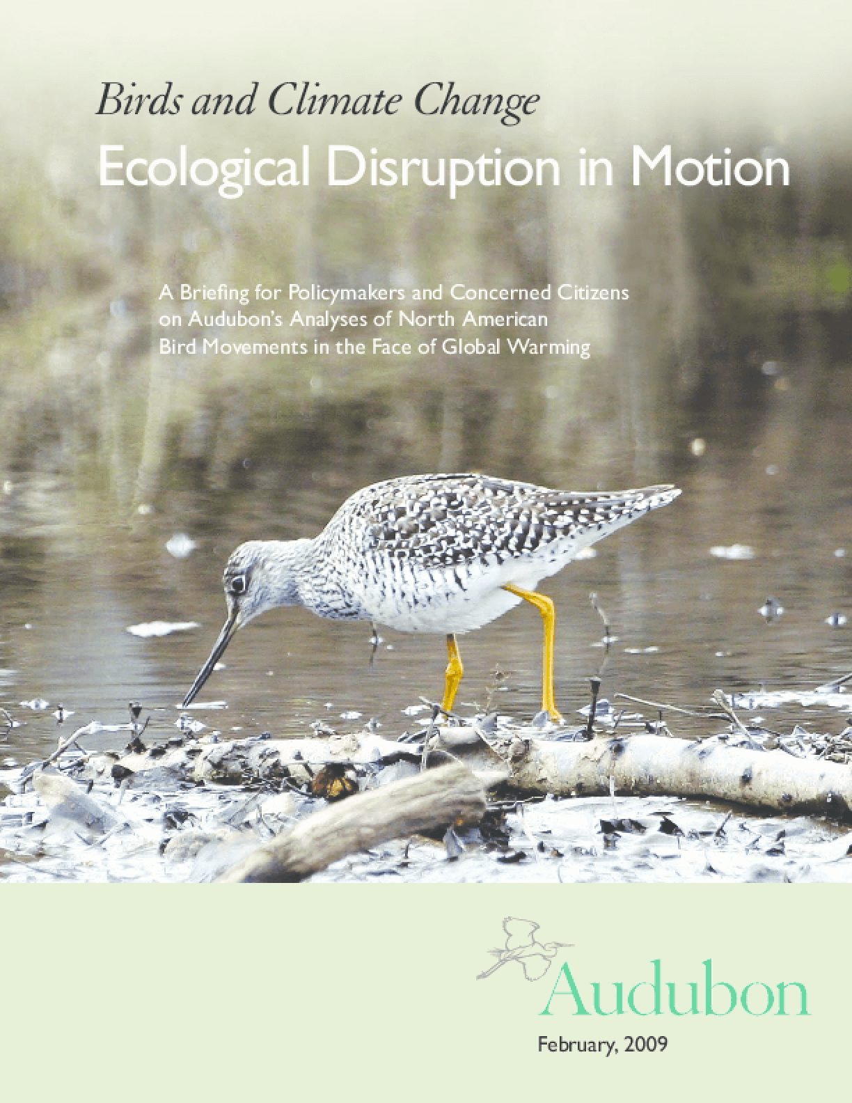 Birds and Climate Change: Ecological Disruption in Motion
